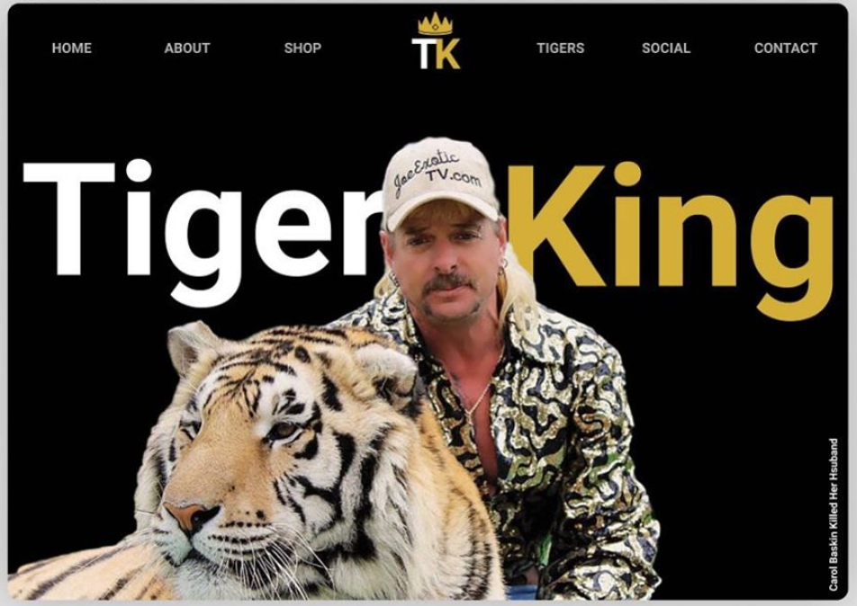 Tiger King Desktop Website Mockup